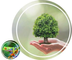 Savoir plus sur la biodiversite