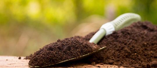 Acheter de l'engrais organique