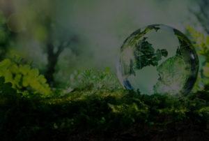 écosysteme